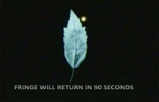 fringe-return-mod-w520.jpg